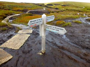 Walking the Coast to Coast - the bogs